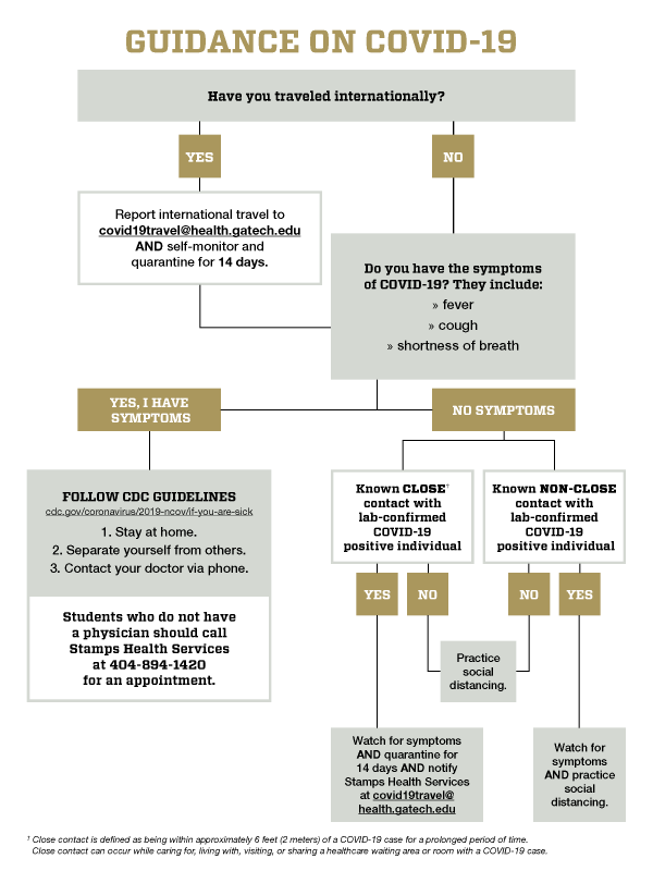 Coronavirus decision tree infographic